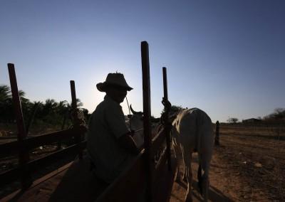 Calumbi e Ingazeira são cidades de gente simples, maior parte da população da zona rural
