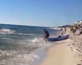 Vídeo mostra mais de 50 tubarões se alimentando perto de areia de praia cheia de banhistas