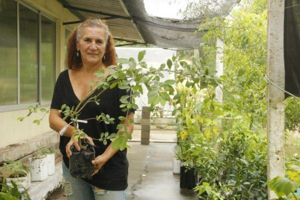 Dona Nádia cresceu junto às acerolas