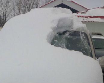 Idoso de 80 anos é multado por dirigir carro coberto de neve