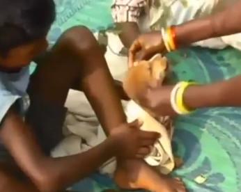 Menino de 7 anos casa com cadela para afastar maus espíritos