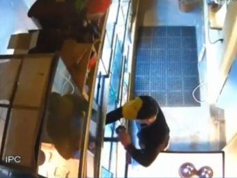 Homem esconde cobra nas calças para roubá-la de pet shop