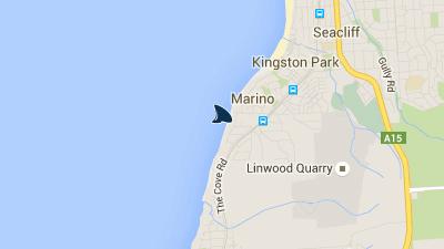 Reprodução Facebook/ Shark Alerts South Australia