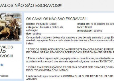 CAVALOS NÃO SÃO ESCRAVOS