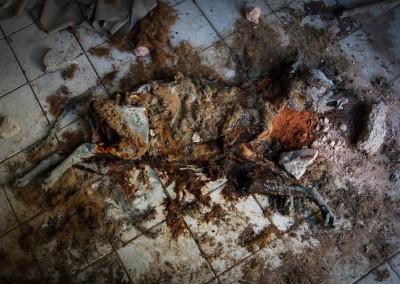Sobre Muribeca e sobre destruição