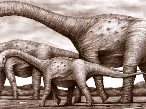Dinossauro nordestino é identificado por cientistas da UFPE