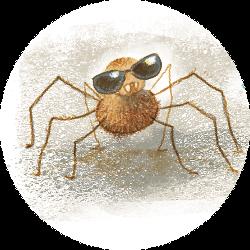 aranha-ilustracao-greg