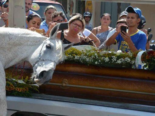 Cavalo emociona ao se despedir de dono em enterro