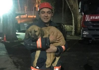 Força-tarefa resgata cachorro em poço de 70 metros
