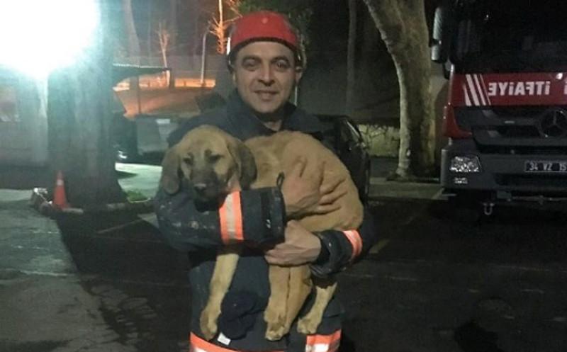Departamento de Bombeiros de Istambul / Divulgação