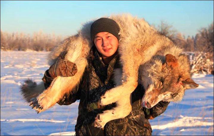 Siberian Times / Reprodução