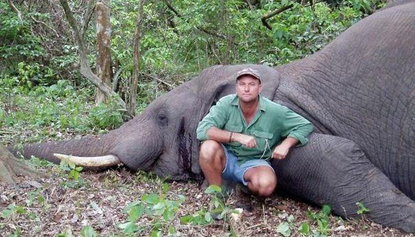 Caçador morre ao ser esmagado por elefante no Zimbábue