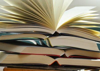 Pesquisa mostra livros mais vendidos no Brasil em 2017 e nos últimos 10 anos
