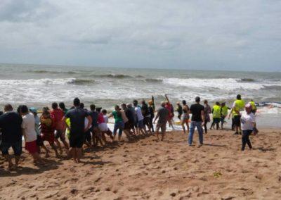 Banhistas tentam desencalhar baleia em praia e dois deles acabam feridos