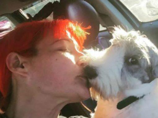 Cansada de desilusões amorosas, mulher se casa com cachorro