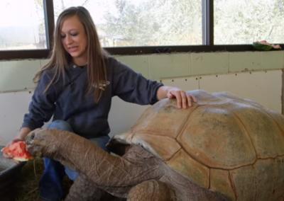 Zoológico com 225 espécies de répteis entra para o Livro dos Recordes
