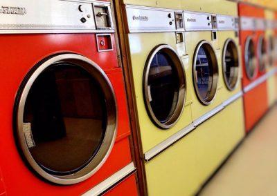 Mulher é investigada por matar gato em máquina de lavar e divulgar vídeo
