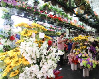 A vida de plástico numa das mais antigas floriculturas do Recife