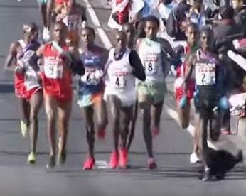 Corredor tropeça em cachorro e perde medalha de prata em maratona
