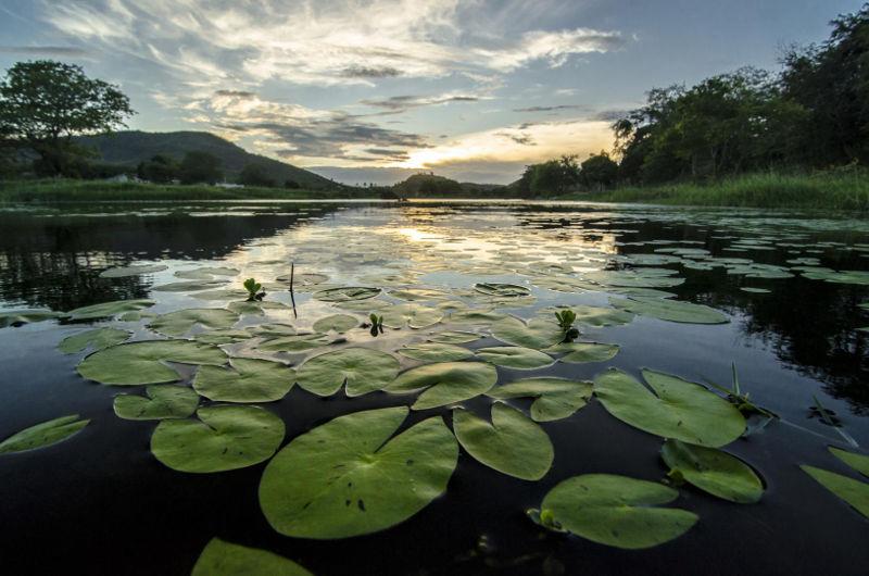 Pernambucano concorre a prêmio internacional de fotografia