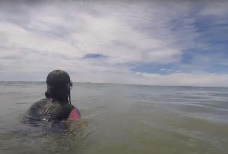 Banhista tira cabeça da água e flagra tubarão ao seu lado