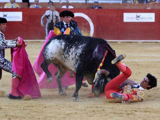 Toureiro é morto a chifradas, ao vivo na TV, na Espanha
