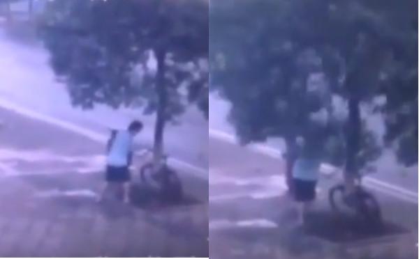 Para conseguir roubar bicicleta, homem serra árvore