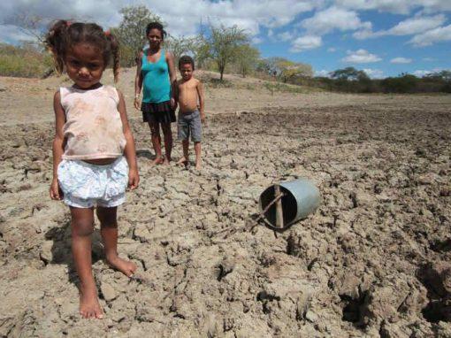 Emergência pela seca atinge 125 cidades em Pernambuco
