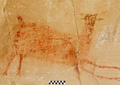 arte-rupestre-pernambuco6