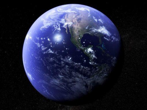 Aquecimento global poderá reduzir espécies em quase metade em 50 anos