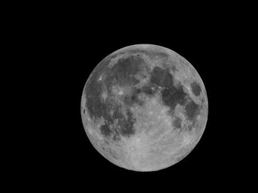 Cientistas californianos buscam produzir cerveja na Lua