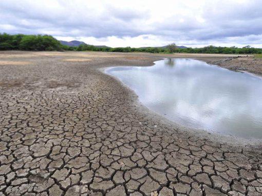 Clima fará seca seguir castigando Pernambuco em 2017