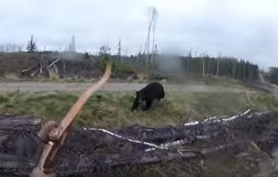 Caçador filma momento em que é atacado por urso