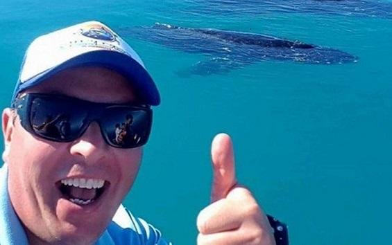 Homem nada por três horas para fugir de tubarão-tigre