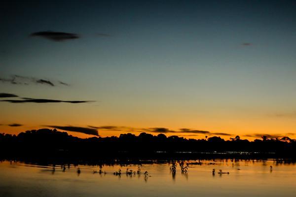Pantanal arara Ed Wanderley_pantanal003