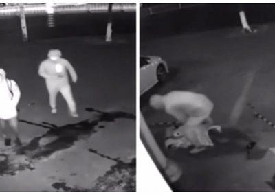 Assaltante erra alvo e joga tijolo na cabeça de comparsa durante assalto